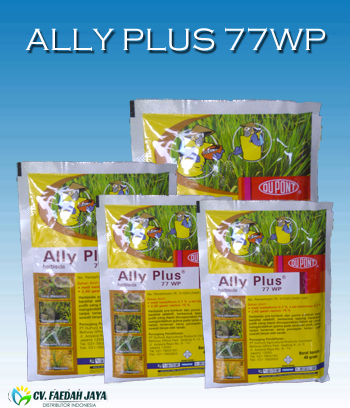 Ally Plus 77 WP