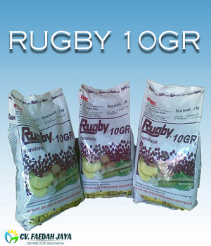 Rugby 10GR