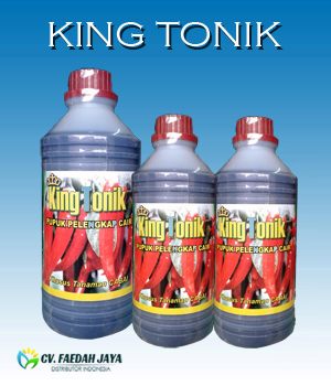 KING TONIK